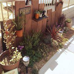 Aluminum Can Crafts, Tin Can Crafts, Garden Landscape Design, Garden Landscaping, Water Features In The Garden, Enchanted Garden, Garden Paths, Pinterest Diy, Green Flowers