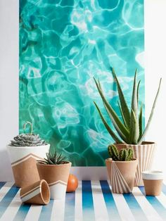 Interior & Garden Design Ideas Beautiful Home Design - Plant Pot - Ideas of Plant Pot - Post is about the pots but I'm in love with this painting/photo of water. Painted Flower Pots, Painted Pots, Painted Pottery, Pottery Art, Potted Plants, Indoor Plants, Water Plants, Plantas Indoor, Pot Plante