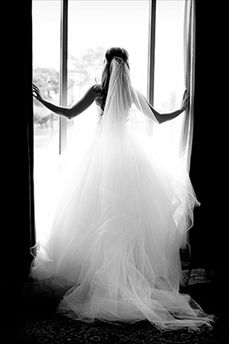 Love this picture..and the veil