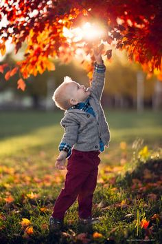 Photograph Wonder by Jake Olson Studios on 500px