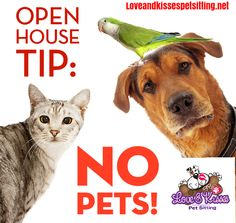 Tip:  Make sure that you remove your pets and any pet-related paraphernalia (and the pet smell) before hosting an open house.   It's the details that can encourage or discourage someone from making an offer.   http://www.loveandkissespetsitting.net  #RealEstate #Realtor