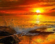 Coucher de soleil                                                       …