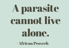 Five African Proverbs on Foolproofing Your Life Wise Quotes, Words Quotes, Wise Words, Inspirational Quotes, Sayings, Crush Quotes, Amazing Quotes, Great Quotes, Quotes To Live By