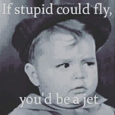 If Stupid Could Fly
