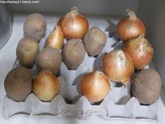 알아두면 평생 도움이 될 살림 보관법 16가지 Good To Know, Helpful Hints, Onion, Diy And Crafts, Food And Drink, Potatoes, Yummy Food, Vegetables, Cooking