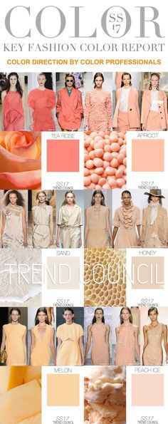 "TREND COUNCIL on Twitter: ""SS17 KEY FASHION COLOR REPORT https://t.co/KU1NYr18bA"""