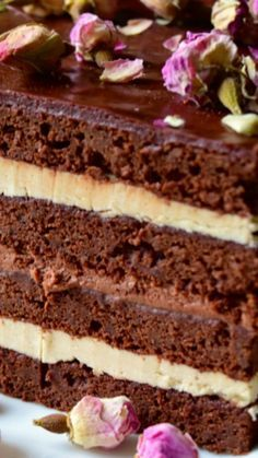 Chocolate Layered Opera Cake with coffee buttercream and chocolate ganache (chocolate buttercream frosting with coffee) Fancy Desserts, Just Desserts, Delicious Desserts, Sweet Recipes, Cake Recipes, Dessert Recipes, Opera Cream Cake Recipe, Sweets Cake, Cupcake Cakes