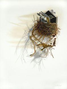 """Trespasser"" American Robin Trompe-l'oeil Bird Oil Painting by Camille Engel | Flickr - Photo Sharing!"