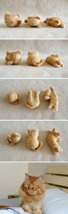 @为为之尾尾:#羊毛毡猫头# 小李子进化史