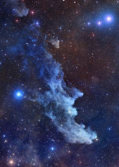 The Wich Head Nebula (IC 2118) is a reflection nebula about 1000 ly away in Orion. Its glow is derived from light reflected from the star Rigel.
