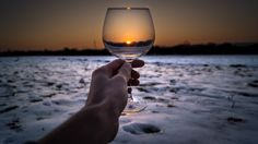 A place to share all the latest happenings in the world of wine. White Wine, Red Wine, Wine Wednesday, Alcoholic Drinks, Italy, Glass, Board, Cheers, February 12