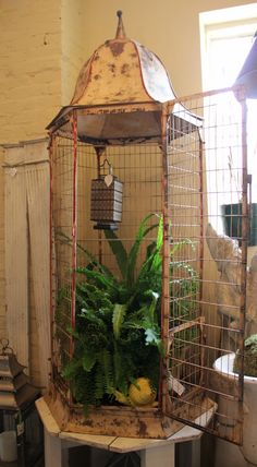 antique bird cage!♥✿✫♥•レo√乇♥