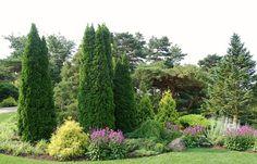 Chicago Botanic Garden - The Dwarf Conifer Garden by UGArdener, via Flickr