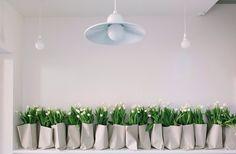 plenty of white #flowers