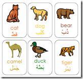 Animal Flashcards - arabic