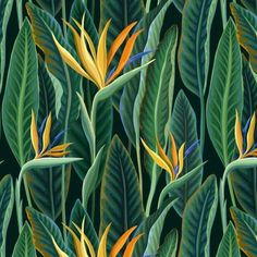 seamless floral pattern with tropical leaves and flowers Pixerstick Wallpaper ✓ Easy Installation ✓ 365 Day Money Back Guarantee ✓ Browse other patterns from this collection! Tropical Art, Tropical Design, Tropical Leaves, Tropical Flowers, Tropical Paintings, Floral Flowers, Tropical Wallpaper, New Wallpaper, Botanical Art