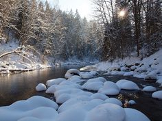 Ahja River by Axiraa - busy, via Flickr