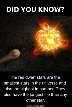 The red dwarf stars have a mass that is to times that of the Sun. Or one could also say that our sun's mass is times that of a red dwarf star. facts Facts About Red Dwarf Stars Cool Science Facts, Science Humor, Wtf Fun Facts, Science Books, Physics Facts, Science Space, Science Nature, Astronomy Facts, Space And Astronomy