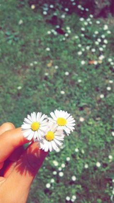 Hehe my photography lessons 😅 Tumblr Photography, Girl Photography Poses, Nature Photography, Photography Lessons, Wallpapers Tumblr, Cute Wallpapers, Sky Aesthetic, Flower Aesthetic, Creative Instagram Stories