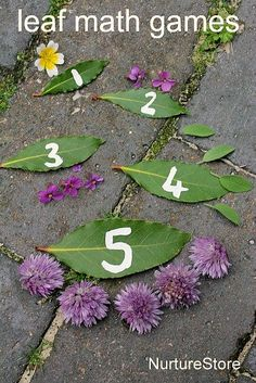 Leaf math games - hands-on math center using natural materials, and ideas for taking outdoor math activities