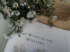 The Wind in the Willows- read this in college for children's literature class and I fell in love with it. ❤