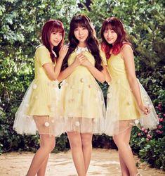 JAV Actresses to Debut as Idol Group in Korea | ARAMA! JAPAN