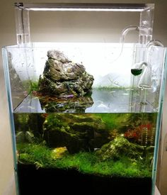 Fine Tetra My First Aquarium 18l Starter Kit Gravel And More.. Includes Food In Many Styles