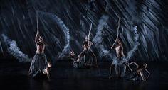 True Stories, Bangarra Dance Theatre - Google Search