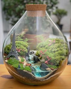 This Company Makes Incredible Micro Ecosystems In Pots And You Will Definitely Want One In Your Home Terrarium Containers, Terrarium Plants, Glass Containers, Glass Jars, Plant In Glass, Interior Design Plants, Diy Garden Fountains, Paludarium, Vivarium
