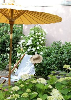 Nice Im Garten mit Mitglied Oceanside G rtnern lehrt vor allem eines Geduld