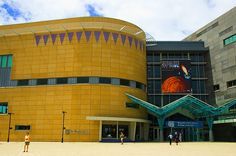 Best Science Museums: Te Papa Museum, Wellington