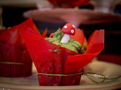 #veruskafoto #veruskaph #ladybug #red #fotoinfantil https://www.facebook.com/VeruskaPh/