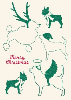 Love this holiday card idea!