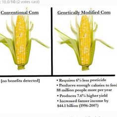 "GM vs Conventional  Thank You!! finally someone understands that ""all natural""  ""organic"" is a bunch of bull shit."