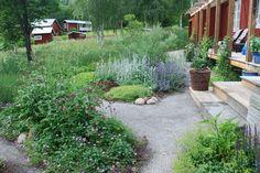 stenmjöl trädgård - Sök på Google