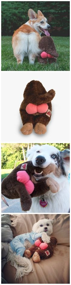 Nothin' butt fun for your pup! The Silly Bums - Monkey is pawesome for cuddling and fetching.