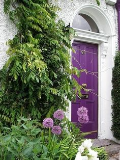 A purple entrance door against a stone white building surrounded by greenery, looks like a perfect combo to me; The extra purple flowers give it a nice punch but I don't think any more purple is needed.. like the item that is escaping the photo- off to the right.