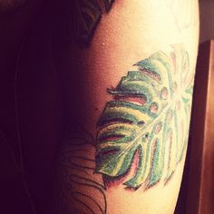 New ink #Monsteratattoo #tropicalia