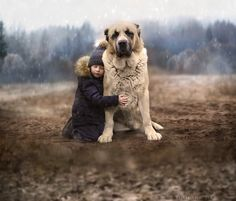 ..between winter & autumn.. by Elena Shumilova - Photo 130210225 - 500px