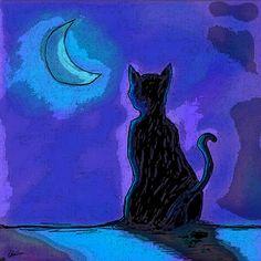 Nieuw in mijn Werk aan de Muur shop: Kat in Maanlicht