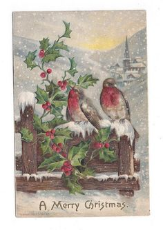 Antique UDB 1906 Embossed Postcard Merry Christmas Snowbirds & Holly on Fence## #Christmas