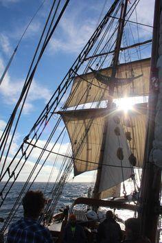 Hawaiian Chieftain under sail off the California coast. #sailing #ships #travel