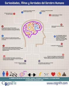 14 curiosidades sobre el cerebro humano (infografía)  Ven a vernos a  http://psicopedia.org
