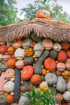 """First Day of Fall - I couldn't think of a better way to celebrate Fall than visiting """"Autumn at the Arboretum"""". I loved looking at the pumpkin displays, they are really incredible. Fall Halloween, Halloween Stuff, Pumpkin House, My Love Song, Pumpkin Display, Dallas Arboretum, Squashes, Happy Fall Y'all, Fall Pictures"""