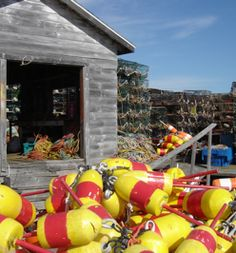 Lobster traps and buoys – Beals Island