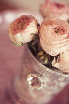 cuales-son-las-flores-de-primavera-ranunculos-vintage
