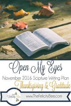Open My Eyes - November Scripture Writing plan is here!  In this months Bible Study, we are studying THANKSGIVING and GRATITUDE and how these virtues need to be part of our lifestyle and not just part of the season of Thanksgiving every November.  Join us over at The Felicity Bee as we hear God in a fresh new way!