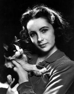 Elizabeth Taylor and her little kitten.