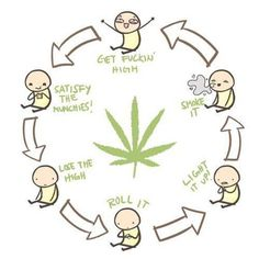 It's the circle of life Stoner Quotes, Stoner Humor, Stoner Art, Weed Humor, 420 Memes, Smoke Weed, Weed Pictures, Comics, Smoking Weed