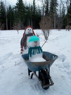 Snowbuddies Portfolio (I'm so going to do this; even though I hate the cold, I love making snowpeople!)